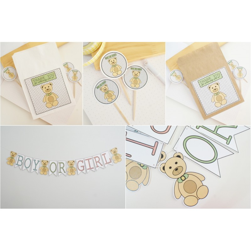 Boy or Girl Party Kit - Gender Reveal | Bear